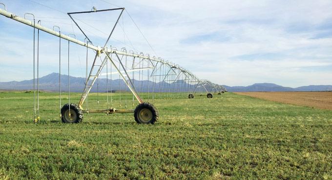 Stetson Engineers Inc  » Irrigation Engineering