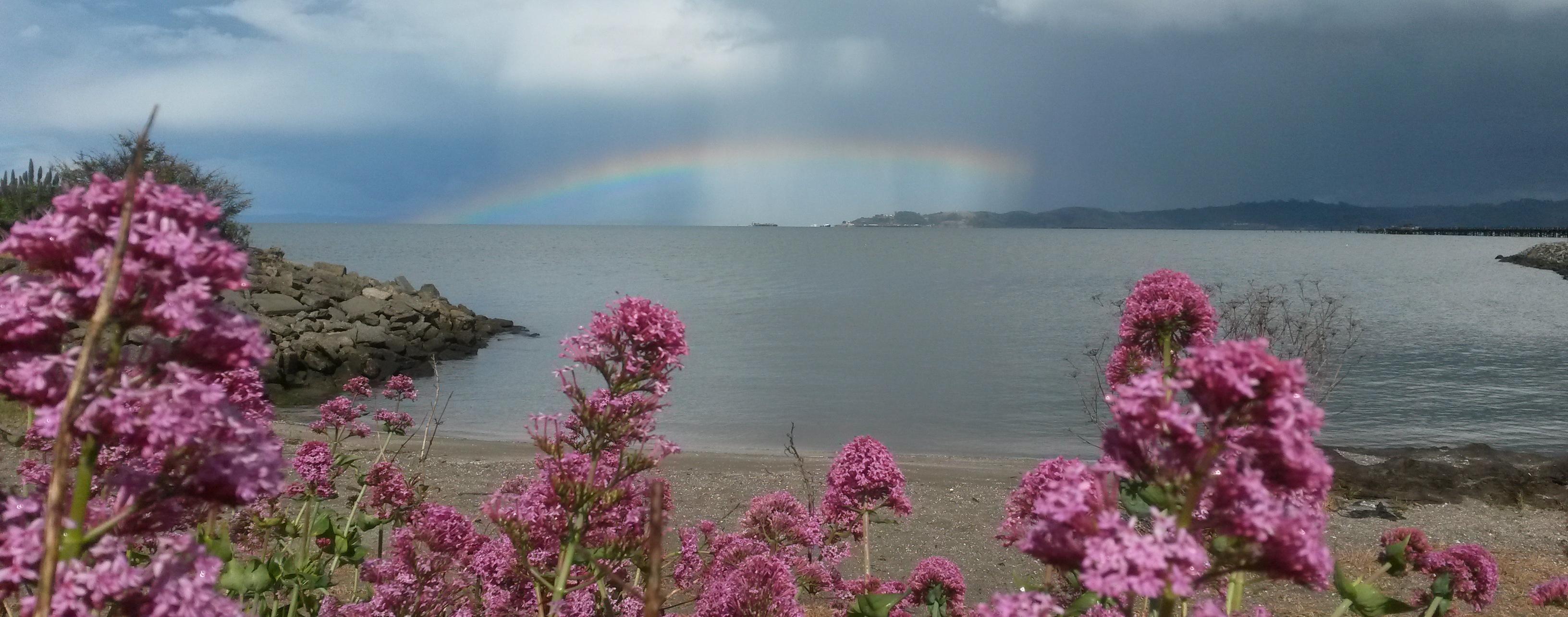 Stetson San Rafael Rainbow View